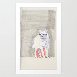 Cat 01 Art Print