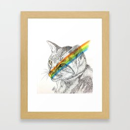 Cat's eye rainbow Framed Art Print