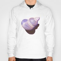 seashell Hoodies featuring Seashell - Painting by Nicole Cleary