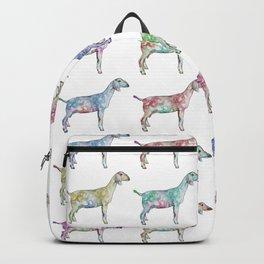 Rainbow Nubians Backpack