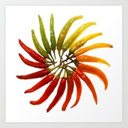Chili Color Wheel Vector Art Print