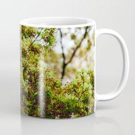 Fresh Japanese Maple Coffee Mug