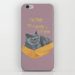 Boxcat iPhone Skin