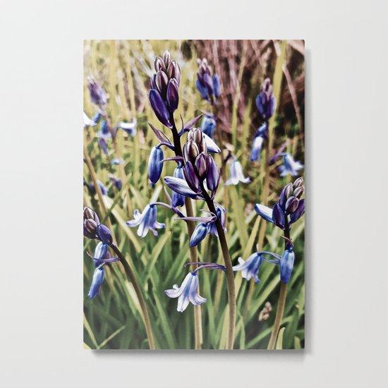 Bluebells, Magical Flowers Of Spells Metal Print