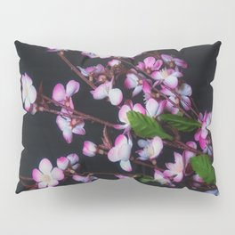 Red and White Flowers on Black Pillow Sham