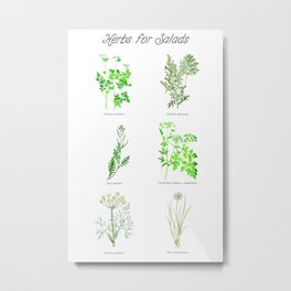 Herbs for Salads Metal Print