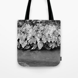 Taro plants Tote Bag