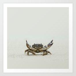 Open arms crab Art Print