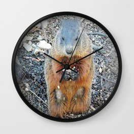 Ground Hog Wall Clock