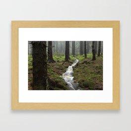 Mountains, forest, rain - water Framed Art Print