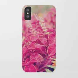 Garden Sunset  iPhone Case