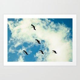 Birds Of A Feather Art Print