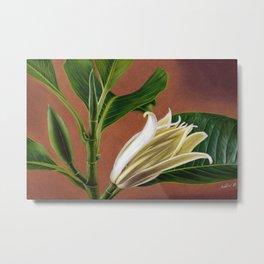 Magnolia Metal Print