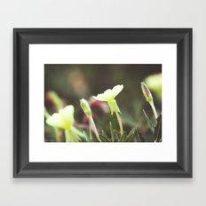 Gentle Landscape Framed Art Print