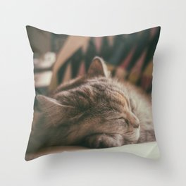 Sweet lullaby. Cat nap. Throw Pillow