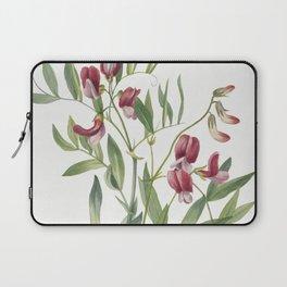 Wild Pea (Lathyrus decaphyllus) (1938) by Mary Vaux Walcott Laptop Sleeve