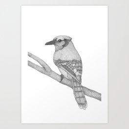 A Bird named Hans Art Print
