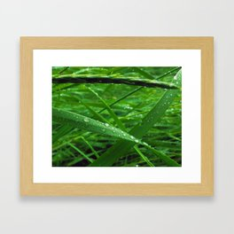 Montana Green Framed Art Print