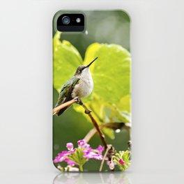 Hummingbird Shower iPhone Case