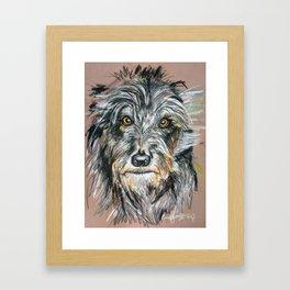 Irish Wolfhound Framed Art Print