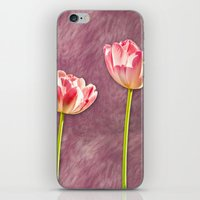 tulip iPhone & iPod Skins featuring tulip  by Karl-Heinz Lüpke