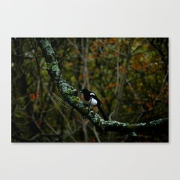 Painting the Trees Canvas Print