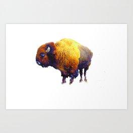 Buffalo Abstract #2 Art Print