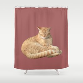 Sleepy ginger cat Shower Curtain