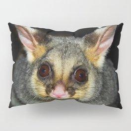 Waddaya Doin' (Brushtail Possum) Pillow Sham