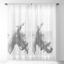 White horse Sheer Curtain