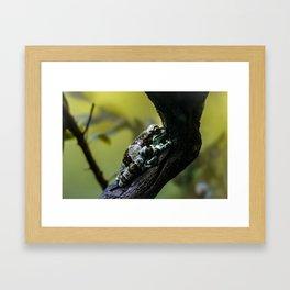Frog Far From Home Framed Art Print