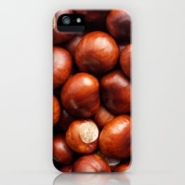 Shiny red-brown conkers in fall iPhone Case