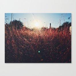 Sun Sphere Canvas Print