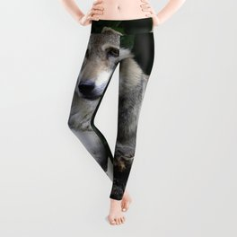 Coy Leggings