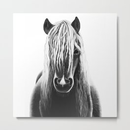 Horse Black and White Painting Metal Print