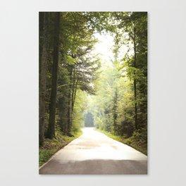 Weg durch den Wald Canvas Print