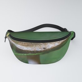 Brown Capped Mushroom with a Wet Blade of Grass Fanny Pack