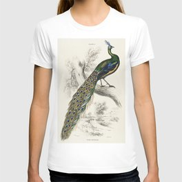 The Naturalists Library by Sir William Jardine (1836), a majestic male peafowl portrait T-shirt