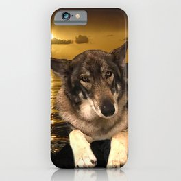 Dog German Shepherd and Sunset iPhone Case