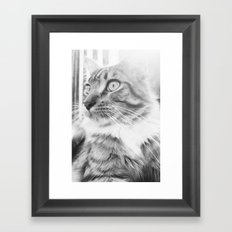 Chi Framed Art Print