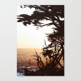 Golden View Canvas Print