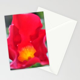 Burst Of Colour. Stationery Cards