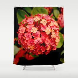 Maui Red Shower Curtain