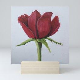 Single rose Mini Art Print
