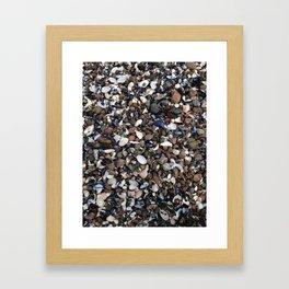 Coquillage  Framed Art Print