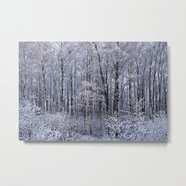 The winter's painting Metal Print