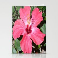 florida Stationery Cards featuring FLORIDA by Manuel Estrela 113 Art Miami