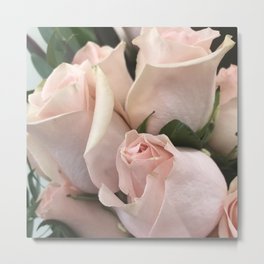 Pastel Gentle Pink Rose Buds Softly Opening Metal Print