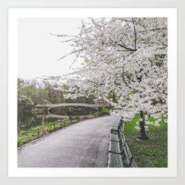 New York City Sakura Art Print