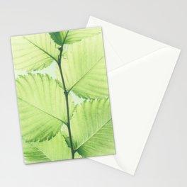 Turkish hazel leave – Baumhaselblätter Stationery Cards